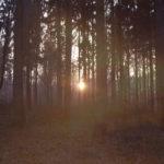 Vom Ruhe finden und Durchatmen