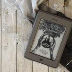 Buchreview ~ Die Pilgrim Saga