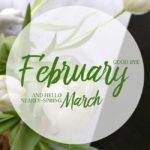 Meine Highlights im Februar 2017