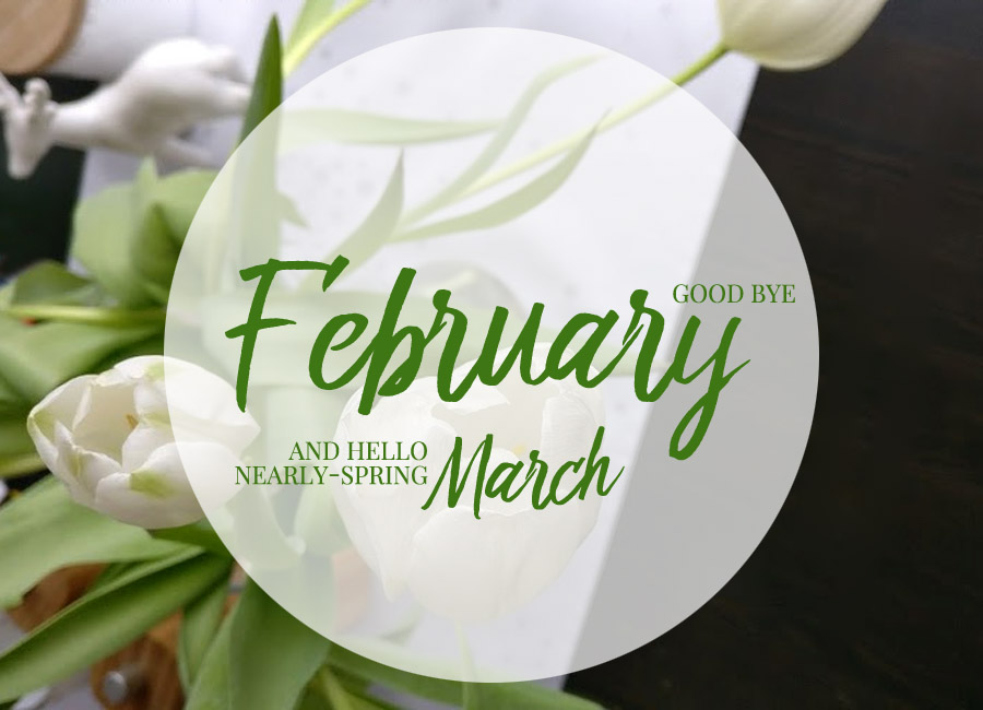 Highlights Februar
