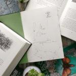 Zu Gast bei Cornelia Funke: das Labyrinth des Fauns