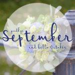 Meine Highlights im September 2017